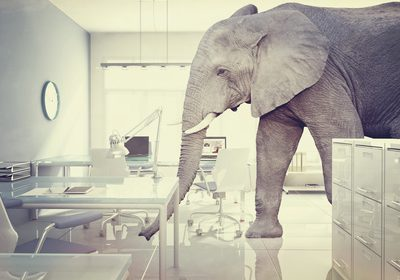 elephant in a room vintage style